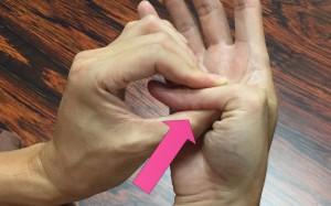 脳卒中手指運動②016
