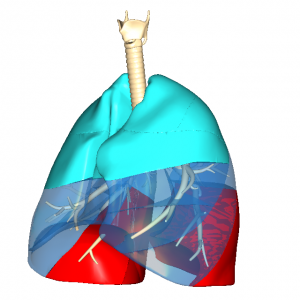 人工呼吸肺 L6