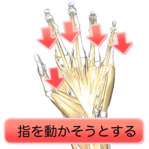 指を動かす1